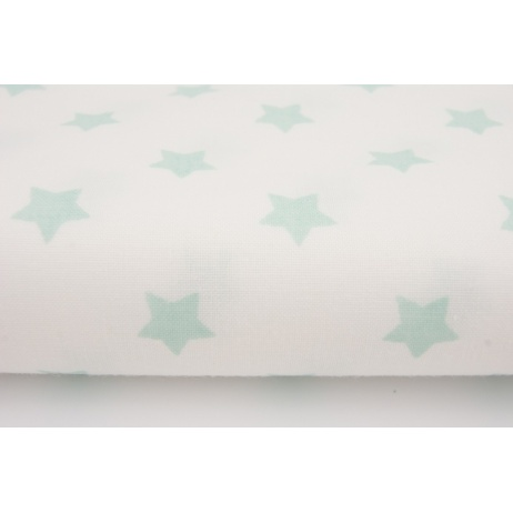Cotton 100% mint stars on a white background