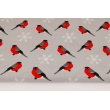 Cotton 100% birds, bullfinches on a light gray background