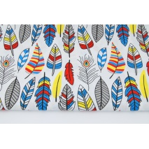 Cotton 100% colorful indian feathers on a white background