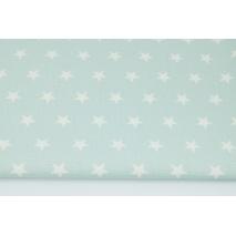 Home Decor, stars 2cm on a powder mint background 220g/m2