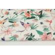Bawełna 100% kolorowe kolibry, kwiaty na białym tle