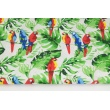 Bawełna 100% papugi wśród tropikalnych liści