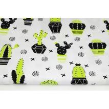 Bawełna 100% zielono-czarne kaktusy na białym tle R
