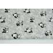 Cotton 100% pandas on a bamboo on a gray background