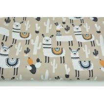 Softshell w lamy na beżowym tle