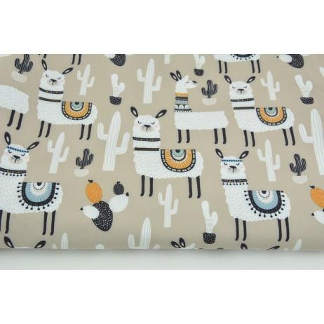 Softshell in llamas on a beige background