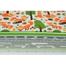 Fabric bundles No. 299 OA 30x140cm