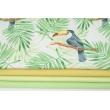 Bawełna 100% tukany, zielone liście palmowe na białym tle