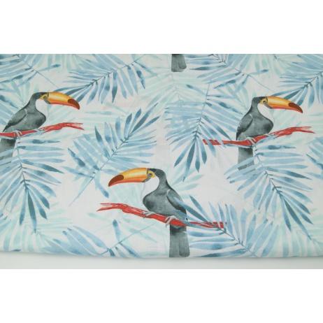 Bawełna 100% tukany, niebieskie liście palmowe na białym tle