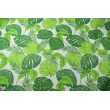 Cotton 100% tropical leaves on a white background