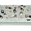 Fabric bundles No. 521 KO 60x140cm