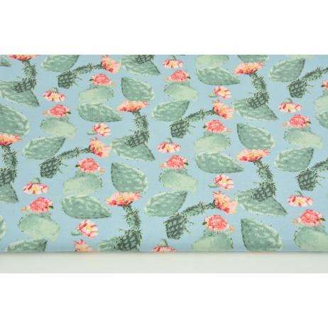 Jersey w kwitnące kaktusy na niebieskim tle