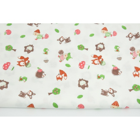 Knitwear 100% cotton forest gnomes on a white background