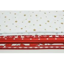 Fabric bundles No 246 AEO 20x140 cm