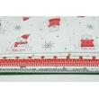 Fabric bundles No. 250 AEO 20x150cm