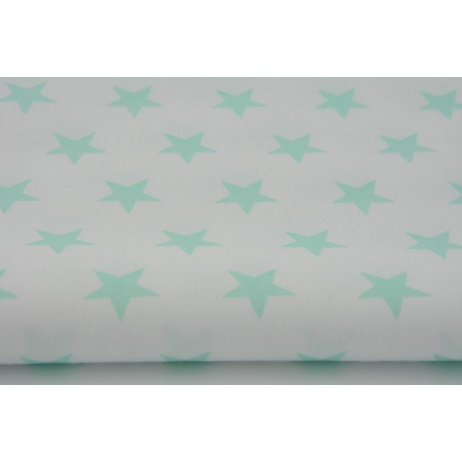 Cotton 100% mint stars 25mm on a white background