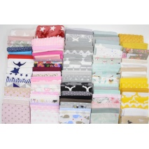 Fabric bundles No. 162LN 30cm x 102pcs