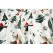 Printed flannel fleece, skating foxes, teddy bears on a white background