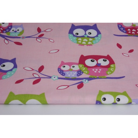 Owls on a pink background NG