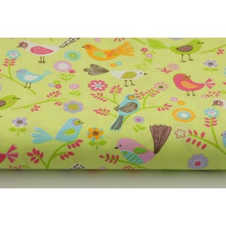 Bawełna 100% kolorowe ptaszki na seledynowym tle