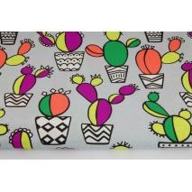 Bawełna 100% kolorowe kaktusy na jasnoszarym tle